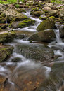 Cascading creek near bushkill falls in the pensylvania pocono mountains a leading pennsylvania often called niagara of Stock Photography