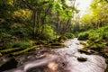 Cascading creek small waterfall in a taken in biei japan Royalty Free Stock Images