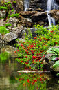 Cascading waterfall and pond Stock Photo