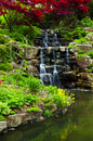 Cascading waterfall and pond Royalty Free Stock Photos