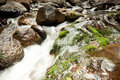 Cascading waters (Lamington Park,QLD,Australia) Stock Photos