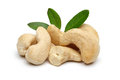 Cashew and leaves Royalty Free Stock Photos