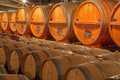 Casks from indoor of modern wine cellar trnava slovakia march great slovak producer mrva and stanko Stock Photography