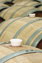 Casks of wine Royalty Free Stock Images