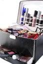 Caso del maquillaje Fotografía de archivo