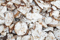 Cassava root slice close up view heap of the Stock Photography