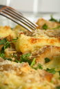 Casserole fish with potatoes Stock Images