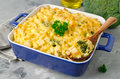 Casserole with pasta, chicken and broccoli Royalty Free Stock Photo