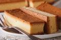 Castella Japanese cake on a plate macro. horizontal Royalty Free Stock Photo