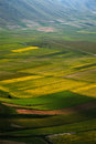 Castelluccio di Norcia Royalty Free Stock Photos