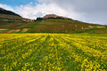 Castelluccio di Norcia Stock Photography