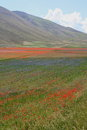 Castelluccio di Norcia / view from the fields Stock Photos