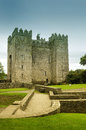 Castelo de Buratty Fotografia de Stock Royalty Free