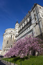Castle of amboise indre et loira centre france Royalty Free Stock Photography