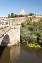 Castle of ciudad rodrigo spanish city we see the bridge to go there you can see some trees and the houses the village it s a Royalty Free Stock Photography