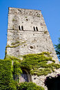 Castle covered by ivy Royalty Free Stock Photos