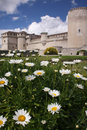 Castle flowers summertime around a near valladolid spain Royalty Free Stock Images