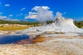 Castle geyser yellowstone national park upper geyser basin wyoming Royalty Free Stock Photo