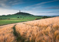 Castle hill huddersfield in huiddersfield victoria tower stands on its own across the valley with green fields and a barley field Stock Image