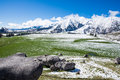 Castle hill in winter southern alps new zealand Stock Photo