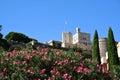 Castle in Monaco Royalty Free Stock Photo