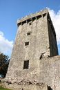 Castle originally dates top castle lies stone eloquence better known as blarney stone tourists kiss stone which said to give gift Royalty Free Stock Photos