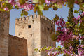 Castle wall surrounded by flowers Royalty Free Stock Photo