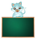 A cat above the greenboard illustration of on white background Royalty Free Stock Image