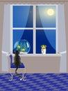 Cat and aquarium on windowsill