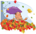Cat autumn and a leaf fall cartoon striped with an umbrella in heap of colour leaves Royalty Free Stock Photo
