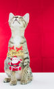 A cat bind wire santa claus for christmas on red background Royalty Free Stock Photo