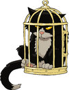 Cat in the bird cage Royalty Free Stock Images
