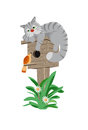 Cat on a birdhouse listens to the song birds gray Stock Photo