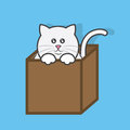 Cat in box popping out of cardboard Royalty Free Stock Photography