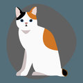 Cat breed cute pet portrait fluffy white black red adorable cartoon animal and pretty fun play feline sitting mammal