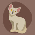 Cat breed sphinx cute pet portrait fluffy young adorable cartoon animal and pretty fun play feline sitting mammal