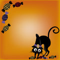 Cat with candies in halloween a black a black hat and some a yellow background Stock Photos