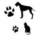 Cat and dog black white illustration with their footsteps Stock Photography