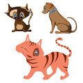 Cat and dog cartoon characters cats a in color Stock Photos