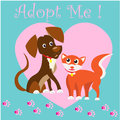 Cat and Dog characters best happy friends adaptations