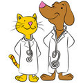 Cat And Dog Pet Doctors Royalty Free Stock Photo