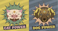 Cat and Dog power Stock Photo