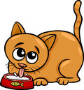 Cat drinking milk cartoon illustration of cute from a bowl Stock Photography