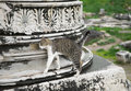 Cat in ephesus on a ruin of an ancient greek town Stock Image