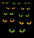Cat eyes green and yellow in darkness vector illustration Stock Image