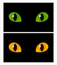 Cat eyes yellow and green vector illustration Royalty Free Stock Images