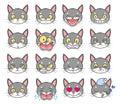 Cat face emotions set