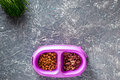 Cat feed in bowl and grass on grey stone background top view copyspace