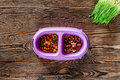 Cat feed in bowl and grass on wooden background top view copyspace