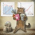 Cat economist with a piggy bank Royalty Free Stock Photo